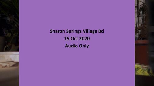 Sharon Springs Village Bd -- 15 Oct 2020