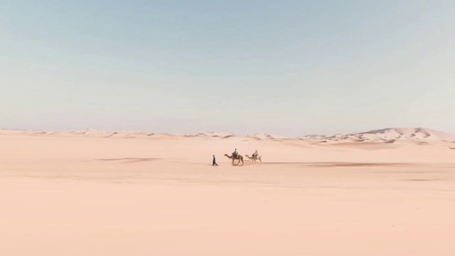 Trip in the desert