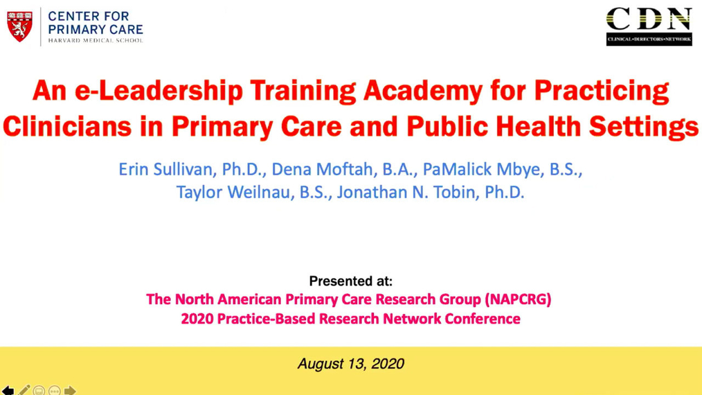 An e-Leadership Training Academy for Practicing Clinicians in Primary Care and Public Health Settings