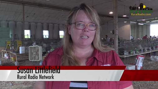 Afternoon Agriculture News Update - July 13, 2018