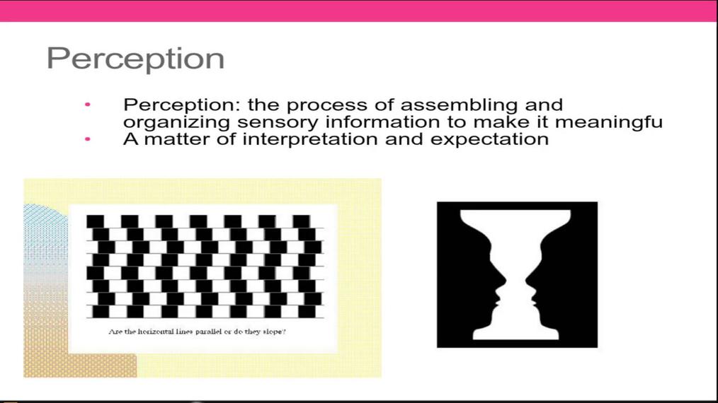Psych Perception