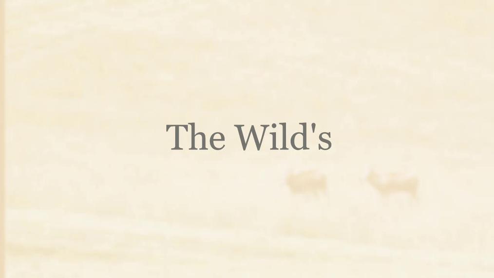 The Wild's Tour in Ohio