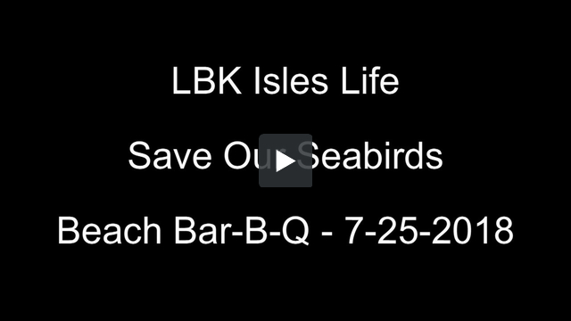 Save Our Seabirds Video