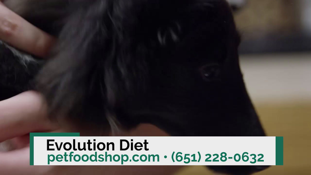 Organic Dog Food in Saint Paul MN, Evolution Pet Food & Nutarian Compounds for disease health service