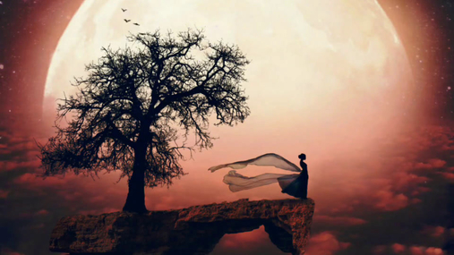 sun, tree, woman, rock, shooting stars, birds