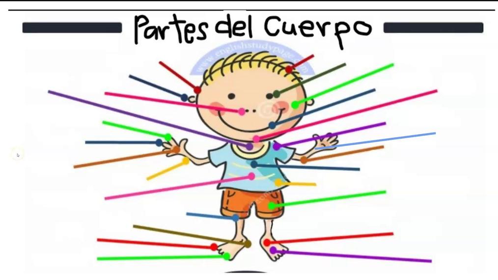 SP2_Partes_del_cuerpo.mp4