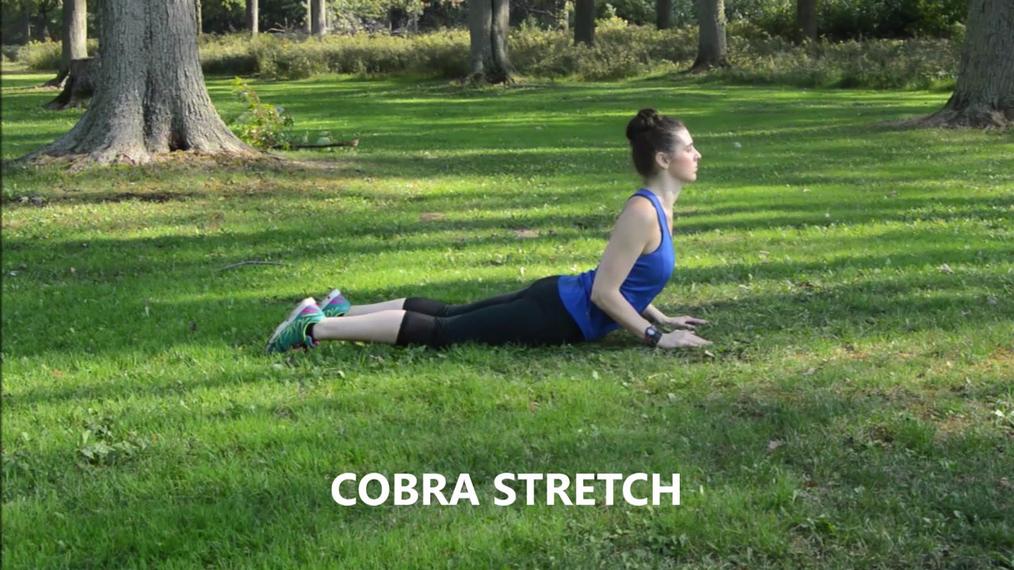 COBRA STRETCH.mp4