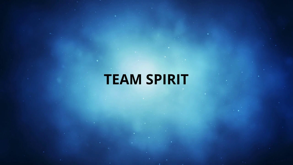Team Spirit March 2019