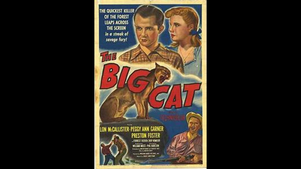 The Big Cat (Action)