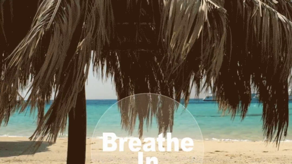 Synchronised Breathing Session with Instrumental Music.mp4