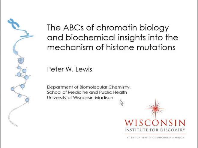 The ABCs of Chromatin Biology and Biochemical Insights Into the Mechanism of Histone Mutations