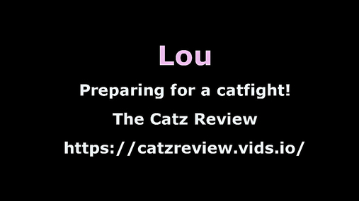 Interview with Lou