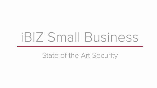 iBIZ Small Business_Demo.mp4