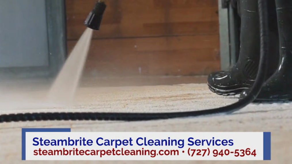 Carpet Cleaning in Tarpon Springs FL, Steambrite Carpet Cleaning Services