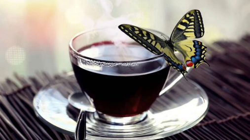 Butterfly at the coffee