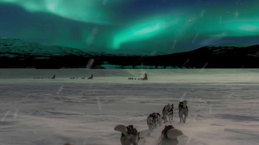 Northern lights and the huskies