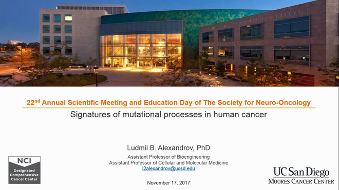 Signatures of Mutational Processes in Human Cancer