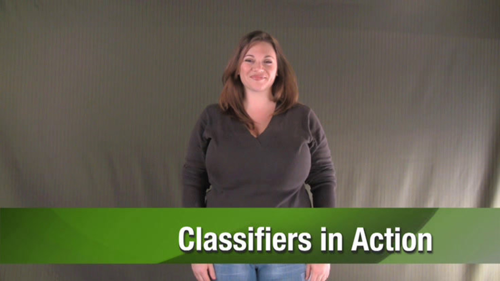 Unit5_Classifiers_in_Action.mp4