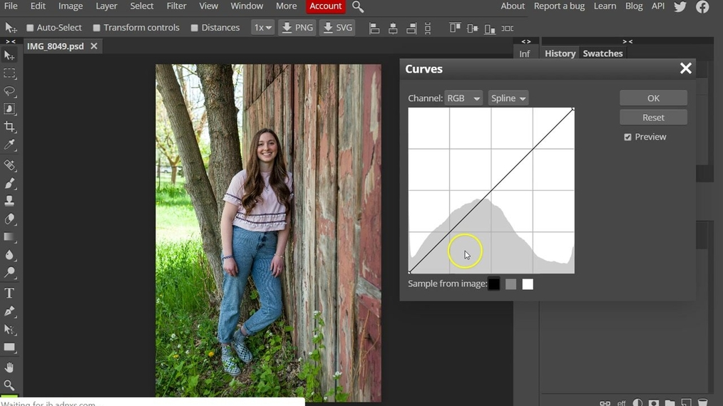 Photopea - Curves Demonstration.mp4