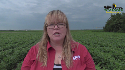 Afternoon Agriculture News Update - June 28, 2018