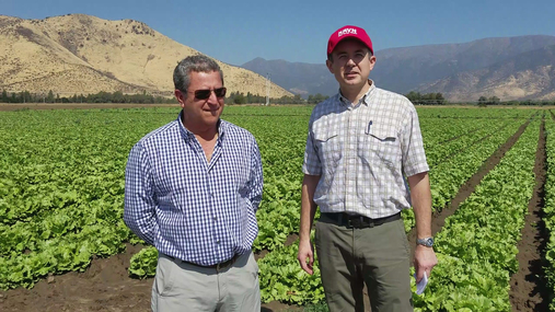 Lead 36 in South America: Santiago produce farm