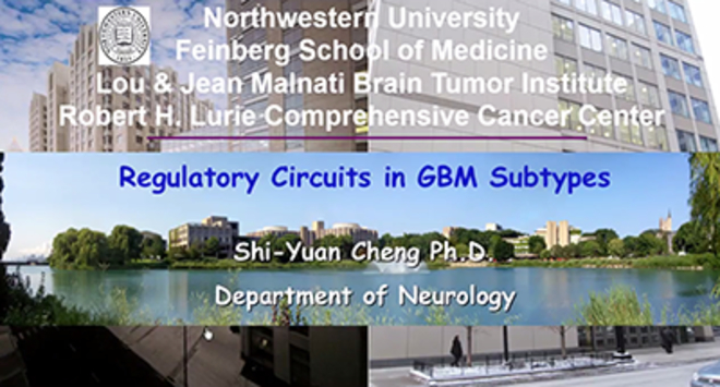 Regulatory Circuits in GBM Subtypes
