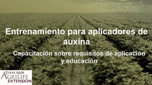 Auxin Spanish.mp4