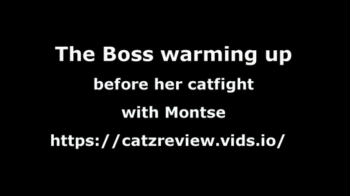 Montse vs The Boss - the - warm up 4k