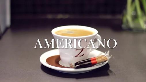 Zinzino Americano