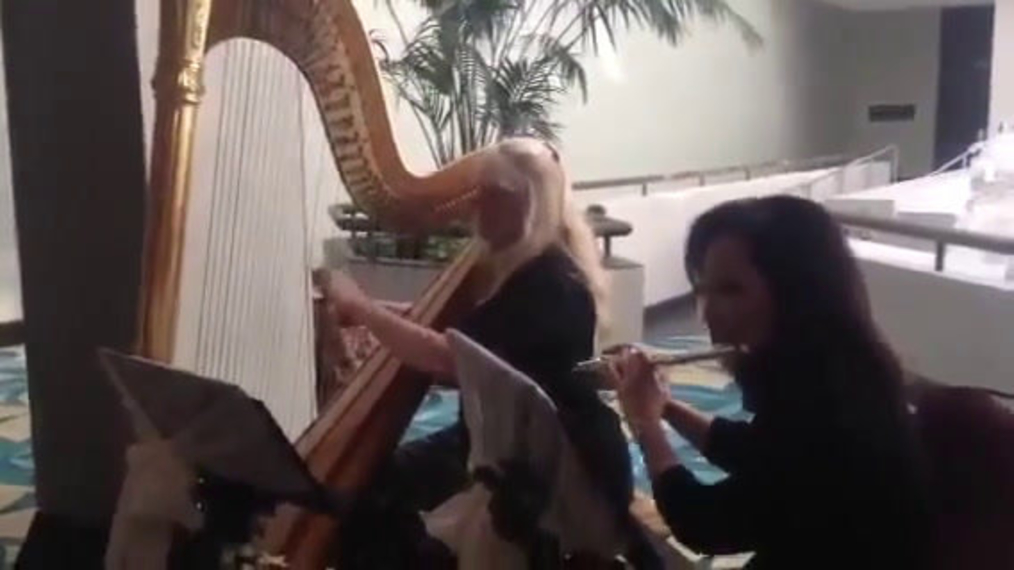 Duo Harp V.G. and Flute.mp4