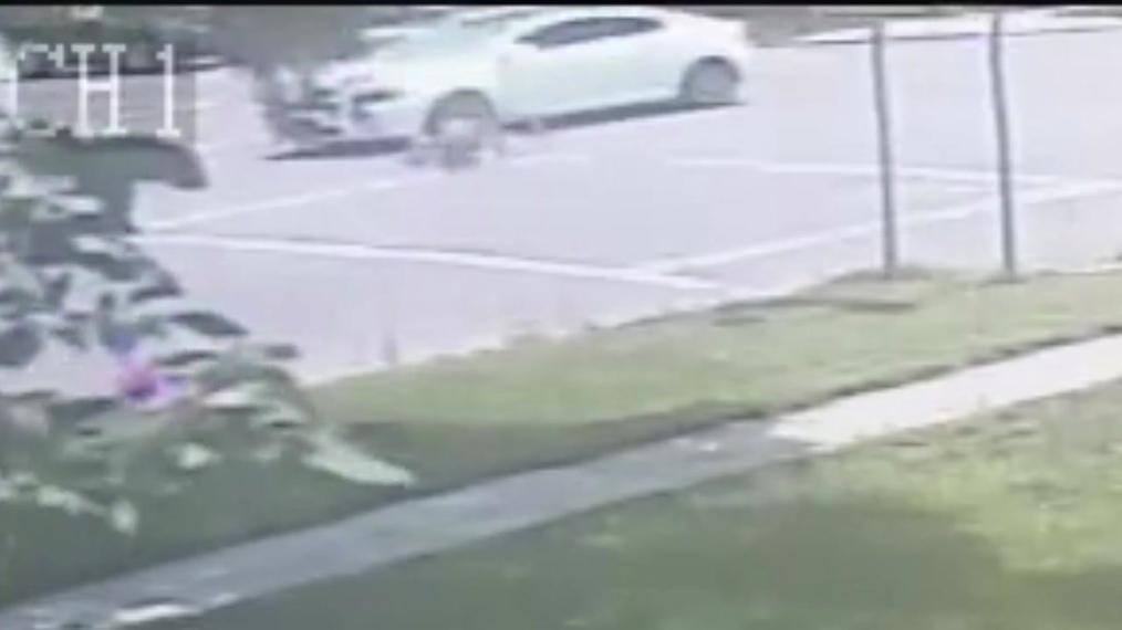 Scottsbluff P.D. Crime of the Week- Avenue B Hit and Run