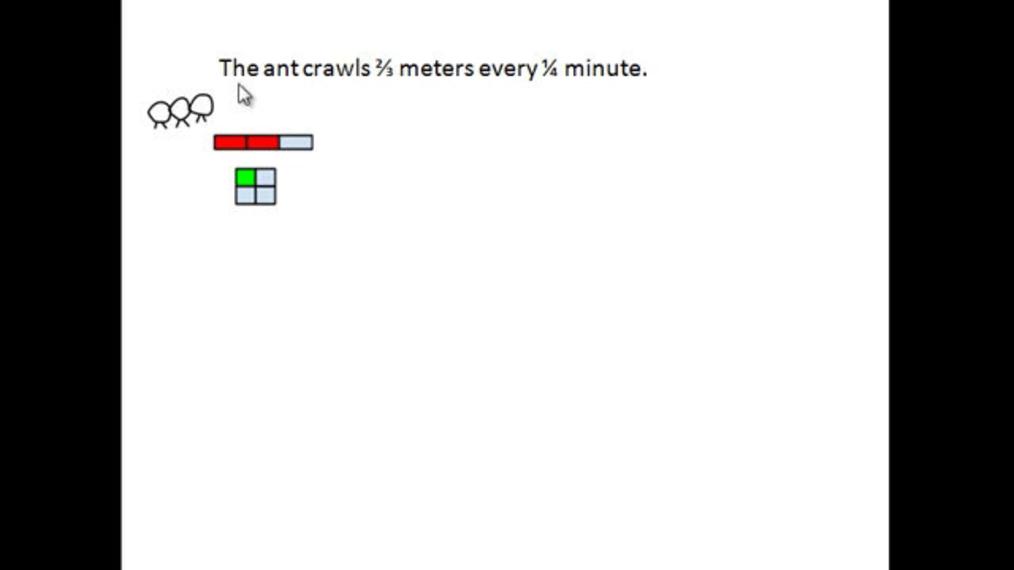 Ant meters per minute.mp4