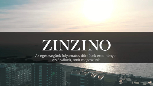 Zinzino BalanceTest Instruction Video HU