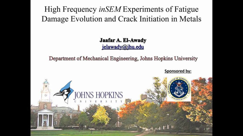 High Frequency InSitu Experiments of Fatigue Damage Evolution and Crack Initiation in Metals