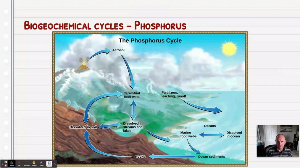 Topic 4: Phosphorus Cycle and Eutrophication