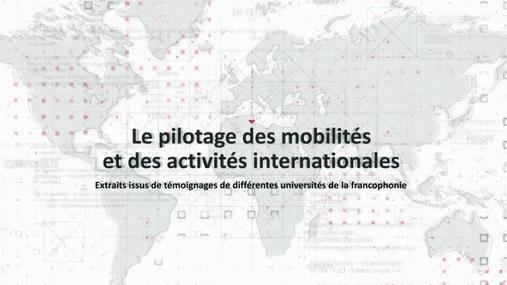 Pilotage des mobilités et des activités internationales