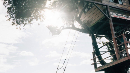 swing in the sunrays