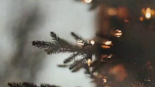 Lights of the christmas