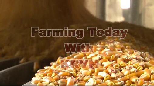 Friday Farming Today, May 26