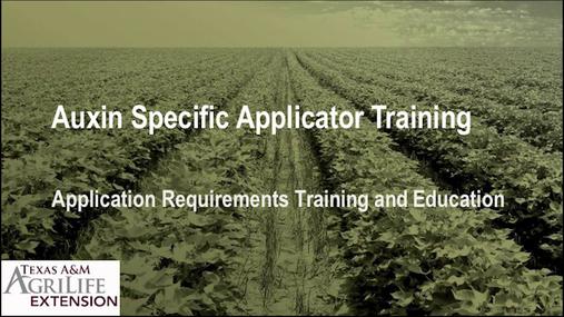 Auxin Video Training.mp4