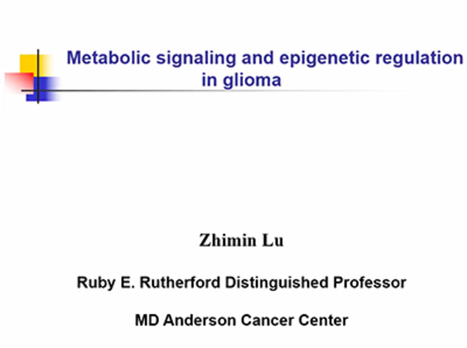Metabolic Signaling and Epigenetic Regulation in Glioma