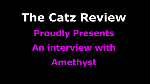 Amethyst - Interview
