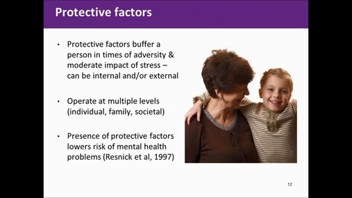 Applying best practice guidelines for mental health promotion in youth in nutrition context.mp4