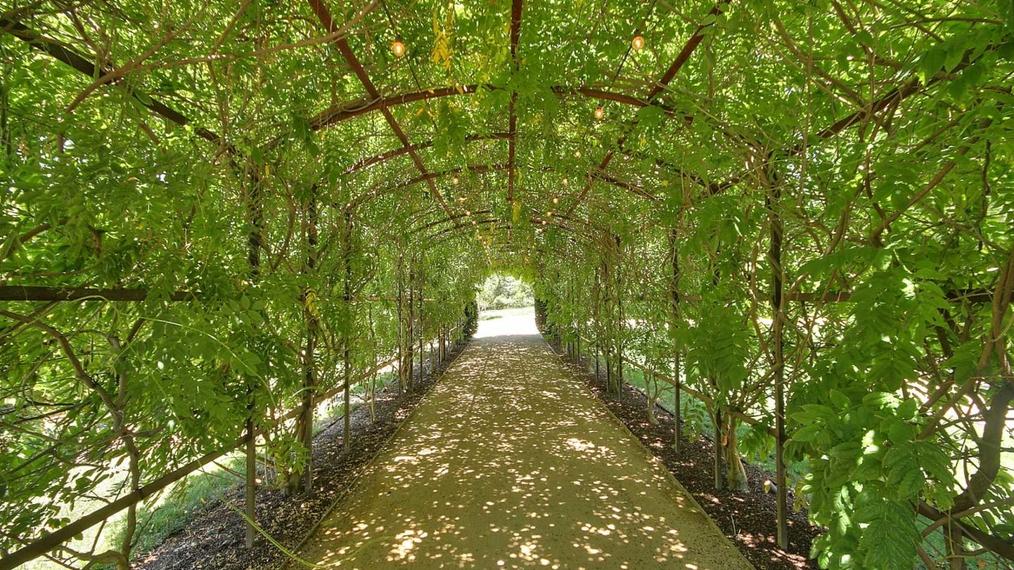 Beautiful Estate in Monte Sereno, CA with incredible outdoor amenities