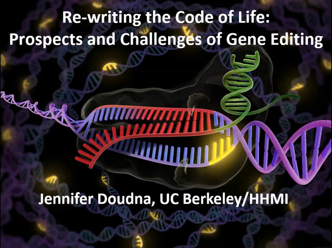Re-writing the Code in Life: Prospect and Challenges of Gene Editing