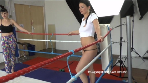 Catfight Clip Preview - 109 - WMV - HD
