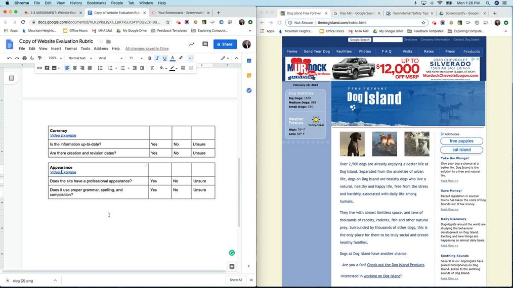 Appearance - Website Evaluation.mp4
