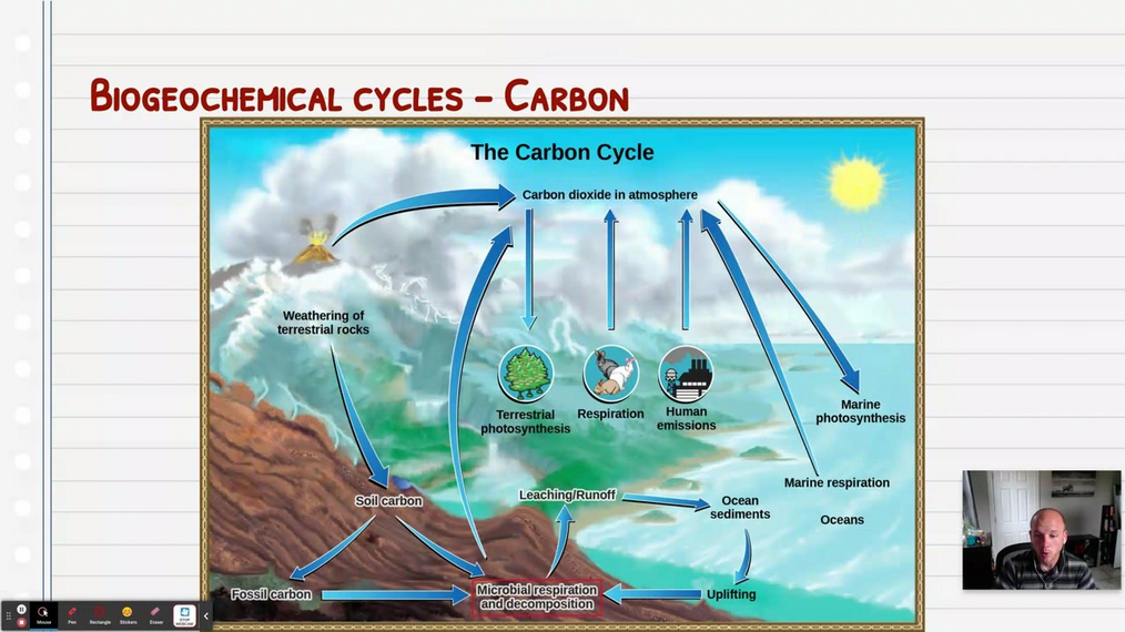 Topic 4: The Carbon Cycle